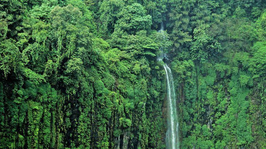 Thoseghar-Wasserfälle bei Satara, Maharashtra, Indien