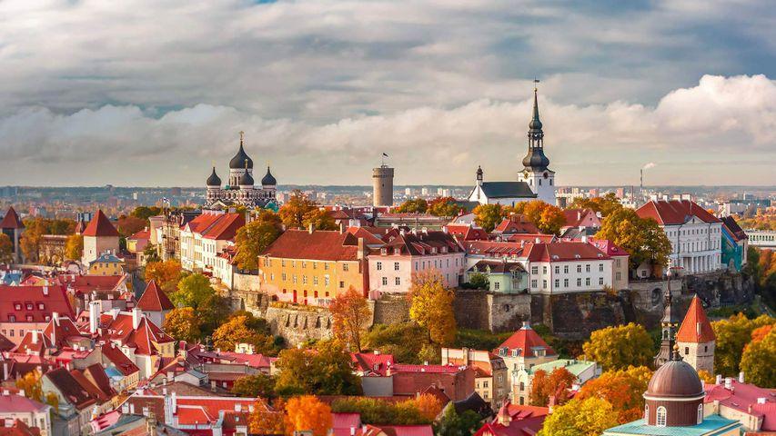Die Altstadt von Tallinn, Estland