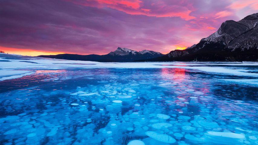 Blasen im Eis des Abraham Lake in Alberta, Kanada