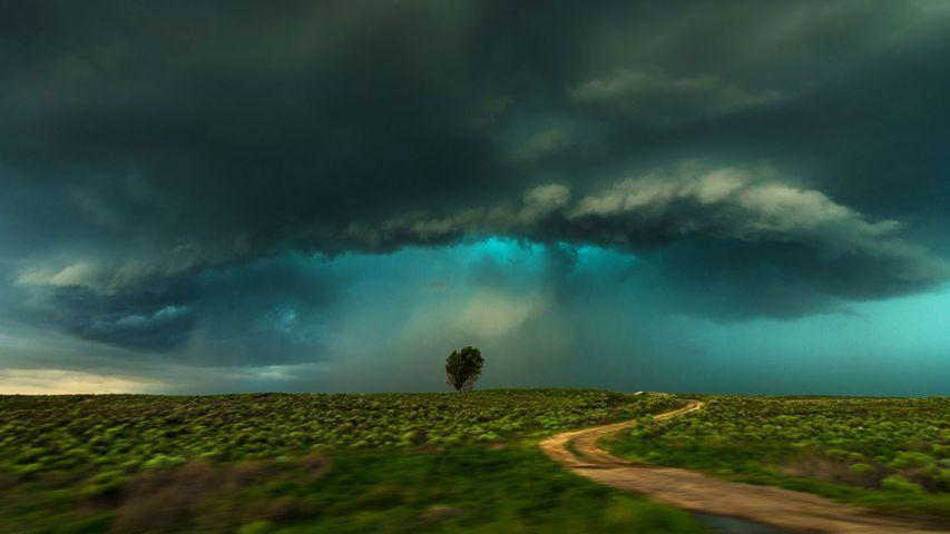 Aufziehendes Gewitter bei Lamar, Colorado, USA