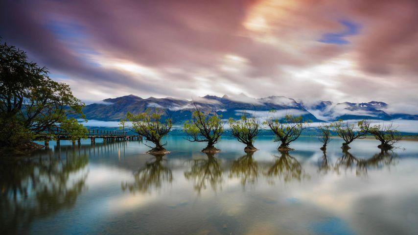 Lake Wakatipu, Queenstown, Neuseeland