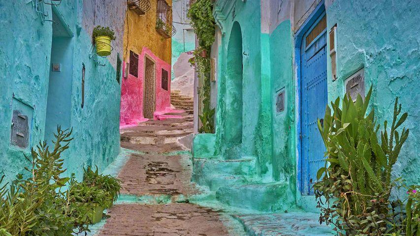 Farbenfrohe Gasse in der Medina von Tétouan, Marokko