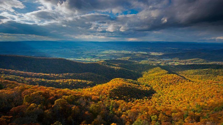 Shenandoah-Nationalpark in den Blue Ridge Mountains von Virginia, USA