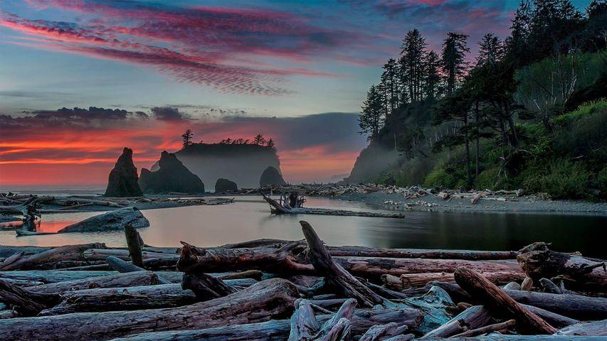 Sonnenuntergang am Ruby Beach im Olympic-Nationalpark, US-Bundesstaat Washington