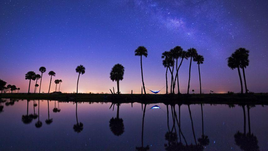 Hängematten-Camping am Econlockhatchee River, Florida, USA