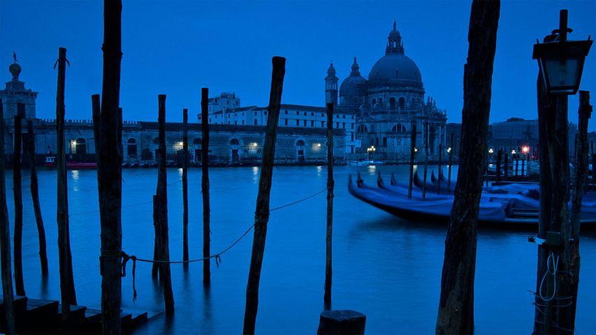 Der Canal Grande und die Basilika Santa Maria della Salute in Venedig, Italien