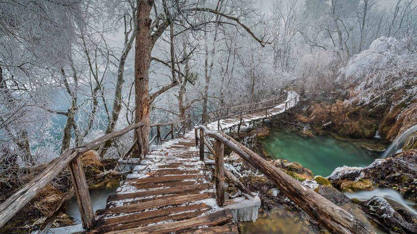 Holzbohlenweg im Nationalpark Plitvicer Seen, Kroatien