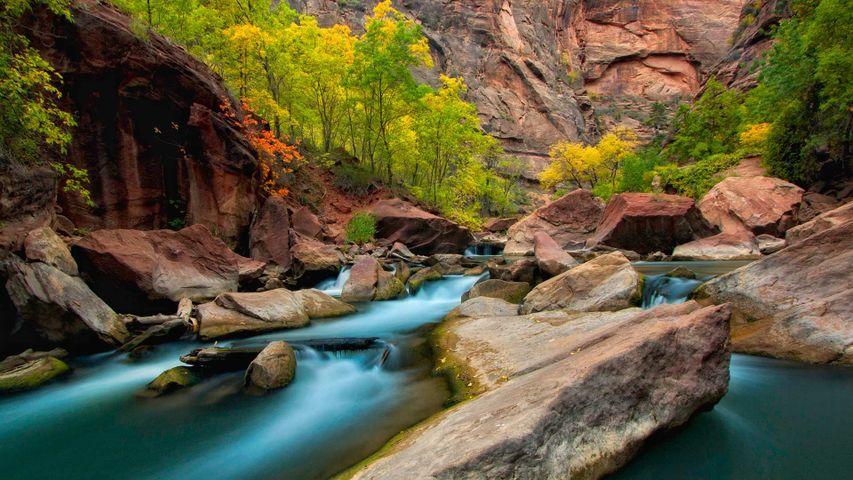 Der Virgin River im Zion-Nationalpark anlässlich des 99. Geburtstags des Parks