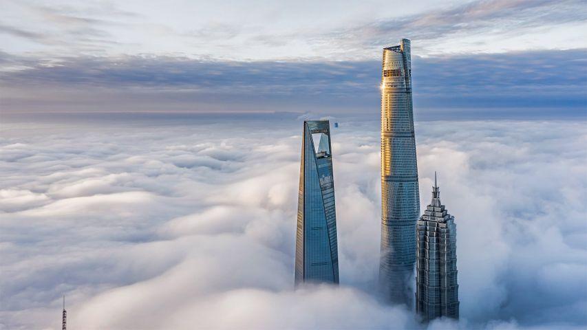 Finanzbezirk Lujiazui, Shanghai, China