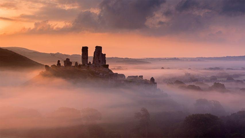 Corfe Castle, Grafschaft Dorset, England, Großbritannien