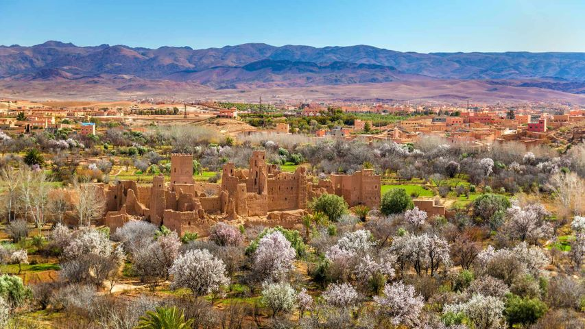 Ruinen einer Kasbah in El-Kelâa M'Gouna, Marokko