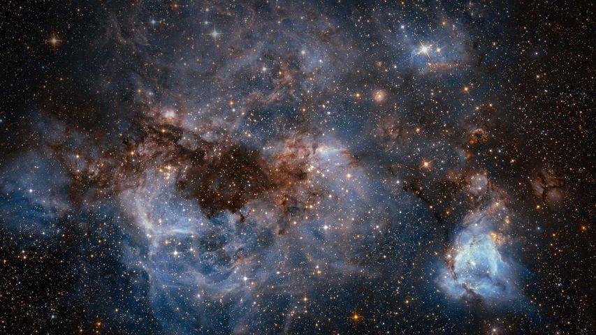 Die Große Magellansche Wolke, aufgenommen vom Hubble-Weltraumteleskop
