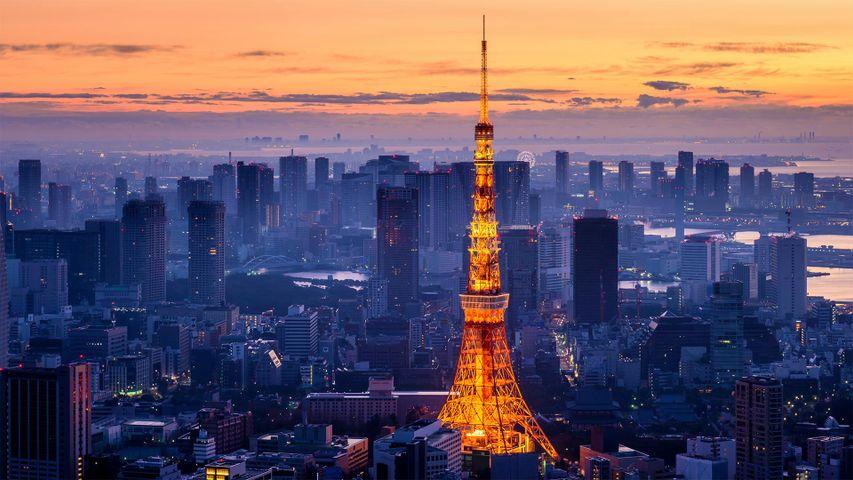 Tokyo Tower im Stadtbezirk Minato, Tokio, Japan